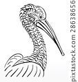 Pelican bird, vector  illustration, sign.  lo 28638656