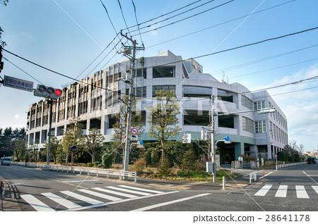 도쿄도 중앙 도매 시장 세타 가야 시장 28641178
