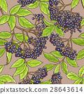 elderberry, pattern, seamless 28643614