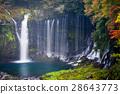 Autumn scene of Shiraito waterfall 28643773