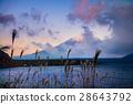 Mount Fuji and lake Motosu 28643792