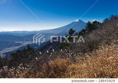 Mount Fuji and Fujiyoshida city 28643929