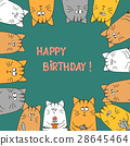 Cute cats. Happy birthday card 28645464