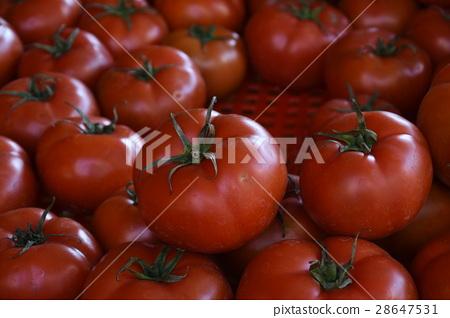 台灣,台南,水果,傳統市場,攤販,四果,健康,維生素,飲食,祭拜,新鮮,鮮紅,翠綠,喜慶,水果攤 28647531