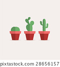 Cactus in a flower pot 28656157