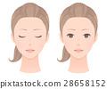 女性的脸一套 28658152