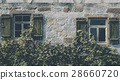 Vintage house facade covered with vines 28660720