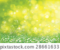 Vector summer nature  background. 28661633