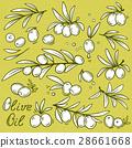 olives set 28661668