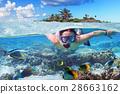 snorkeling, snorkel, sea 28663162