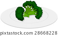 Boiled brocolli on white plate 28668228