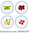 Different vegetables on round plates 28668248