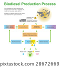 Biodiesel Production Process 28672669