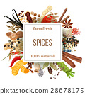 Culinary spices big set under squire emblem 28678175