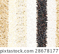Different types of rice seamless pattern. 28678177