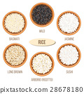 rice Basmati wild 28678180