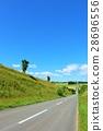 hokkaido, hill, roller coaster road 28696556