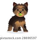 벡터, 개, 강아지 28696597
