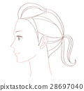 female, lady, woman 28697040