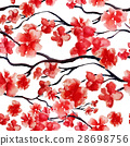 Japanese cherry branch spring blossom, red sakura 28698756