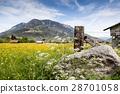 Spring landscape in bavaria, germany, alps 28701058