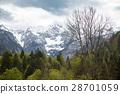 Spring landscape in bavaria, germany, alps 28701059