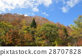 Autumn leaves and mountains / The autumn leaves 28707828