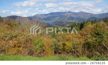 autumn, autumnal, mountain 28708226