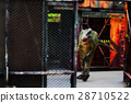 Blurred image of dinosaur 28710522