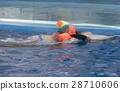 dolphin, pool, girl 28710606