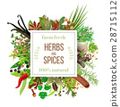 big set Culinary herbs and spices under emblem 28715112