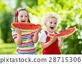 Kids eating watermelon in the garden 28715306