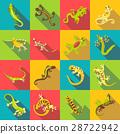 与众不同的 不同的 蜥蜴 28722942