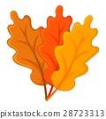 Autumn leaves icon, cartoon style 28723313