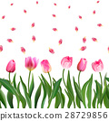 Seamless pattern with realistic pink tulips 28729856