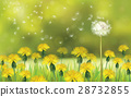 Vector  nature  background, dandelions    field. 28732855