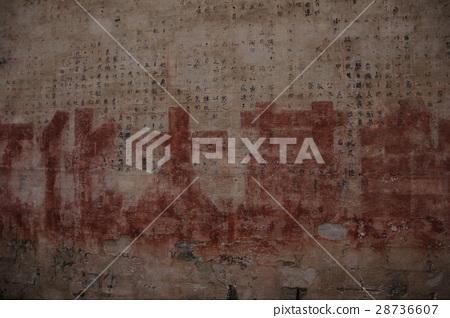 文化大革命 28736607