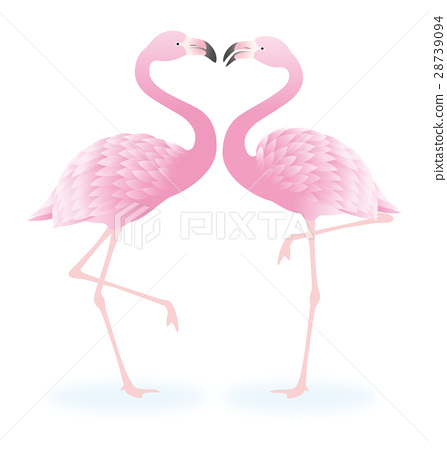 flamingo, flamingoes, flamingos 28739094