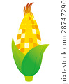 corn, grain, vegetables 28747290