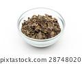 ginkgo, gingko, Ginkgo Leaf 28748020