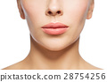 closeup of woman face and lips 28754256
