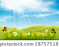 Spring nature landscape background with flowers  28757518