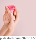 Closeup image of pink french manicure with rose 28766177