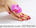 flower, hand, manicure 28766285