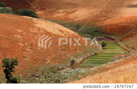 Road through Madagascar highland countryside 28767267