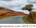 Road through Madagascar highland countryside 28767274