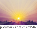 Vector  sunset   background. 28769587