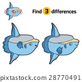 Find differences, Ocean sunfish 28770491