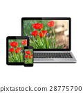 Modern digital devices with flowers on the screen 28775790