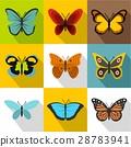 昆蟲 蝴蝶 ICON 28783941